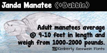 Janda Manatee Fp 950x475