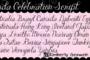 Janda Celebration Script Fp 950x475