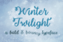 Winter Twilight Flag
