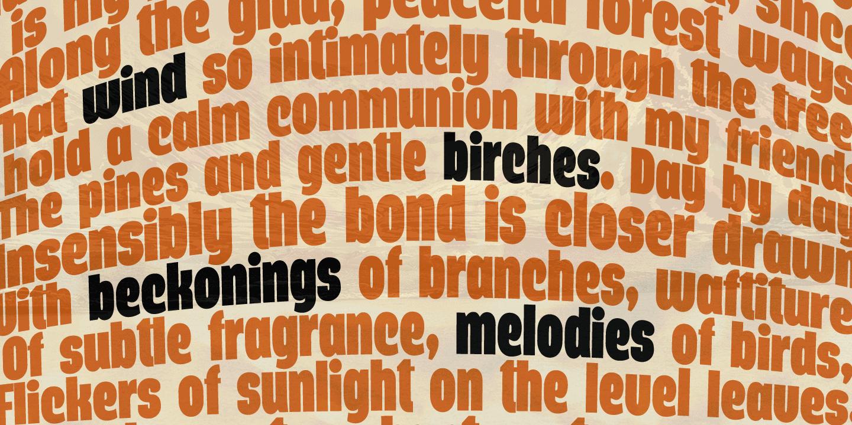 Querino Sans Poster02