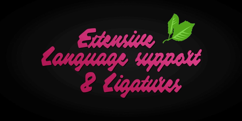 Raspberry Script Poster03