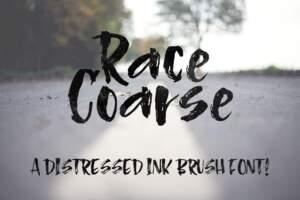 Racecoarse Hero