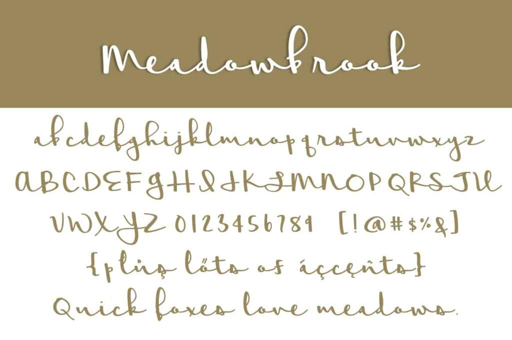 Meadowbrook Letters