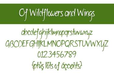 Of Wildflowers And Wings Letters