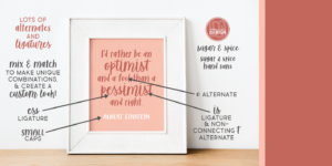 Sugar & Spice Font Duo Myfonts Optimist