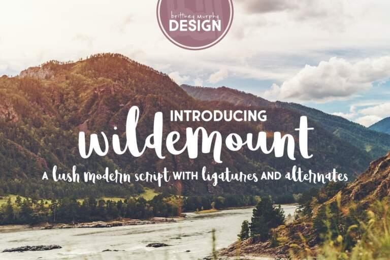 Wildemount2