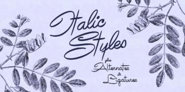 Avelana Poster02