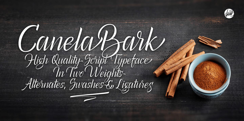 Canela Bark Poster