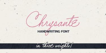 Chrysante Poster01