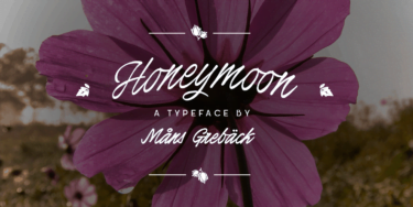 Honeymoon Poster01